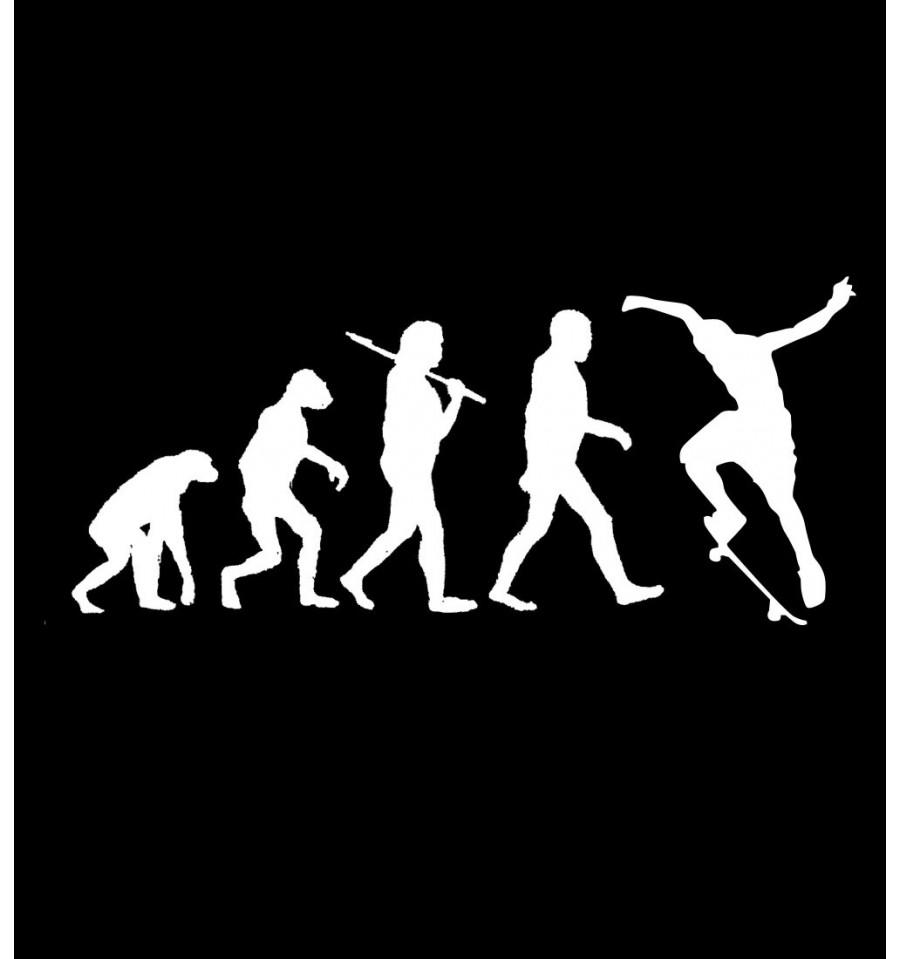 SKATE EVOLUTION